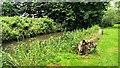 SU2598 : Radcot Cut, Kelmscott Manor, Oxfordshire by Brian Robert Marshall