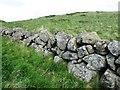 NO2106 : Remains of field boundary wall, Lomond Hills by Bill Kasman