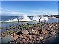 NT6878 : Fun in the Waves at East Beach Dunbar by Jennifer Petrie