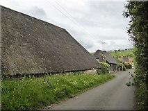 SU3477 : Thatched barns at Eastbury by Stefan Czapski