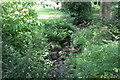 SO2800 : Nant y Gollen (2), Pontypool Park by M J Roscoe