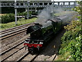 SU6178 : 'Flying Scotsman' by Peter Trimming