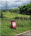 SO2813 : Red bin for dog waste only, The Cutting, Llanfoist by Jaggery