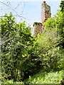 NT2762 : Lantern Tower, Rosslyn Castle by David Dixon