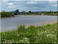 SE8309 : The River Trent at Burringham by Mat Fascione