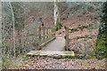 SX4961 : Footbridge in Widewell Wood by N Chadwick