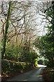 SW9350 : Lane, Trenowth by Derek Harper