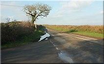 SW9843 : Road to St Austell by Derek Harper