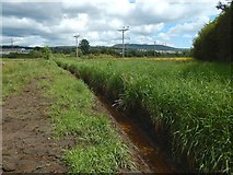 NS3977 : Drainage channel leading to the River Leven by Lairich Rig