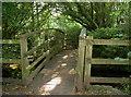 ST5762 : Wooden footbridge over the Chew by Neil Owen