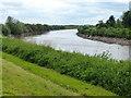 SK8097 : The River Trent near Gunthorpe by Mat Fascione