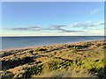 NU1835 : Bamburgh Beach by PAUL FARMER