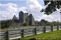 NS8384 : Torwood Castle by Richard Webb