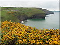 SM8617 : The Pembrokeshire Coast Path near Priest's Vault by Dave Kelly