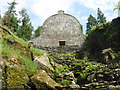 NS1385 : Restored Fernery at Benmore by M J Richardson