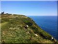 SY6770 : South West Coastal Path near Southwell by David Dixon