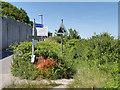 SY7072 : Grove, South West Coast Path by David Dixon