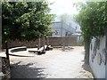 SX8060 : Heath's Garden by Michael Dibb