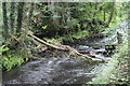 SO2102 : Obstruction in Ebbw Fach River, Six Bells by M J Roscoe