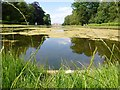 TL0934 : On the end of Long Water in Wrest Park, Bedfordshire by Richard Humphrey
