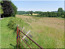 ST6601 : Gate at the Bottom of the Giant's Hill by David Dixon