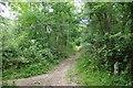 TL7705 : A Bend in the Saffron Trail by Glyn Baker