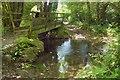 SX7168 : Footbridge over Holy Brook by Derek Harper