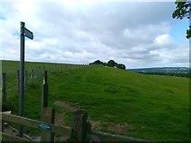 NZ1858 : Footpath Sign, Gibside by PAUL FARMER