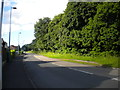 SP1399 : Weeford Road, Roughley (1) by Richard Vince