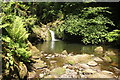 SH5573 : Waterfall and pool at Plas Cadnant by Jeff Buck
