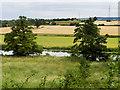 SP0245 : River Avon near Evesham by David Dixon