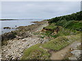 SV9009 : Beach at Morning Point by Oast House Archive