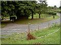 ST5663 : Tree down by Neil Owen