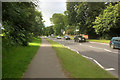 ST8623 : Shaftesbury, Christy's Lane by David Dixon