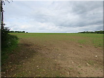 ST9898 : Field near Thames Head, Gloucestershire by Jaggery