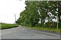 TL7834 : Lane towards Great Maplestead by Robin Webster