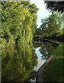 SP1867 : Stratford Canal at Lowsonford by Derek Harper