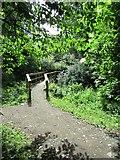 NO2603 : Footbridge on path to Purin Hill, East Lomond by Bill Kasman