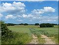 TF8017 : Farmland next to the Peddars Way by Mat Fascione