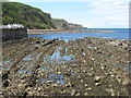 NT9560 : Burnmouth Bay by M J Richardson