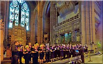 SJ3589 : Anglican Cathedral, Liverpool, Rock Choir by Len Williams