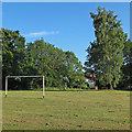 TM4693 : Goal and Tree in Playing Field, Aldeby by Roger Jones
