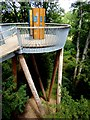 ST8589 : Lookout on the Stihl Treetop Walkway by Oliver Dixon