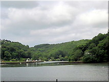 SX2553 : West Looe River Joining East Looe River by Roy Hughes