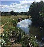 SU9946 : Wey and Arun Canal by Chris Thomas-Atkin