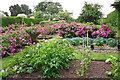 NY3746 : Kitchen and flower garden at Rose Castle by Rose and Trev Clough