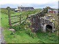 NY8154 : Allen Smelt Mill Flue at Fell House by Andrew Curtis