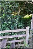 SS7401 : Mid Devon : Footpath Stile by Lewis Clarke