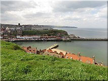 NZ8911 : Looking across the River Esk to the west side of Whitby by Steve Daniels