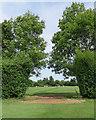 TL4357 : Cambridge cricket by John Sutton